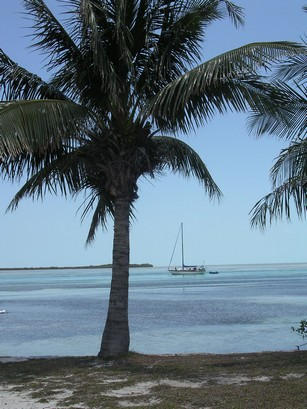 Bimini Bay Photo